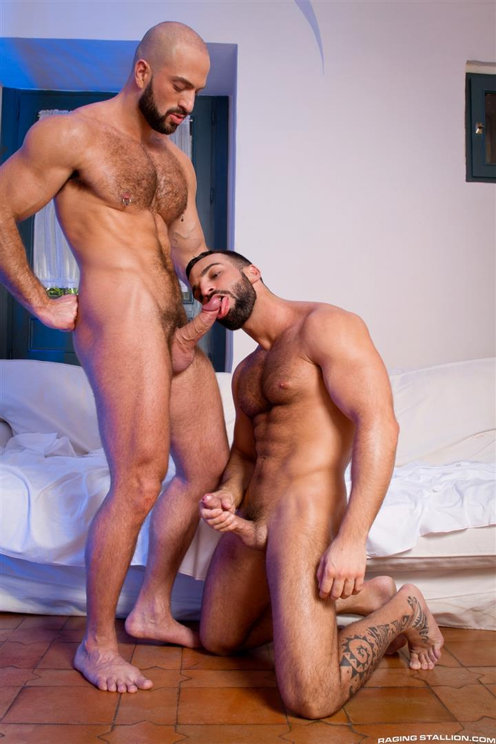 Muscle hunk pornstar cock sucking