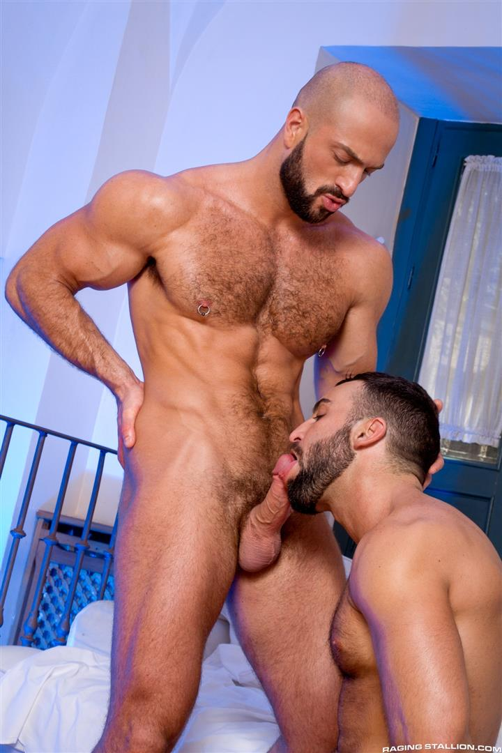Ragingstallion biggest penis hunks