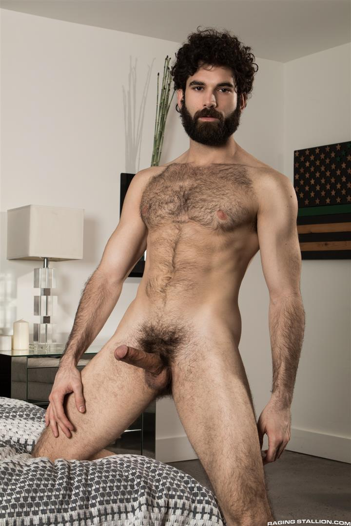 Sucking hairy cock gay